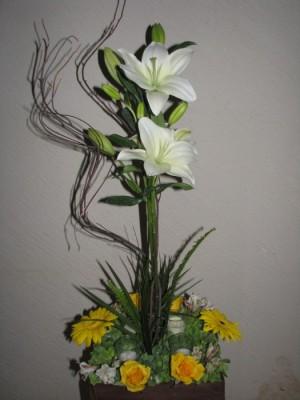 Flores, Peluches, Arreglos Naturales, Arreglos Artificiales y más...
